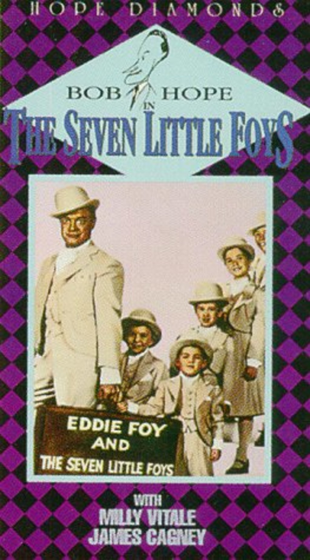 The Seven Most Popular Types Of Businesses: Watch The Seven Little Foys On Netflix Today