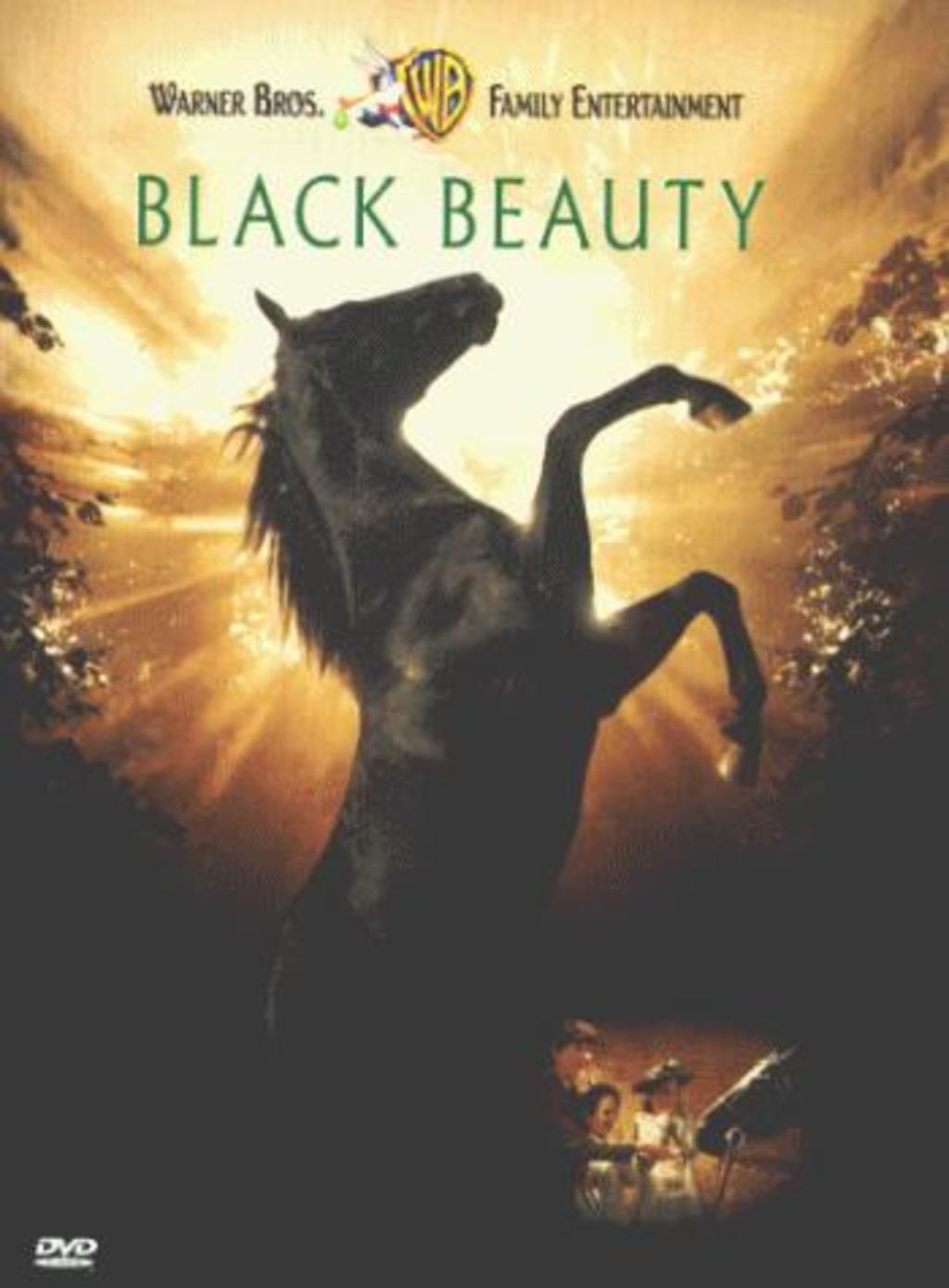 Image result for Black beauty movie