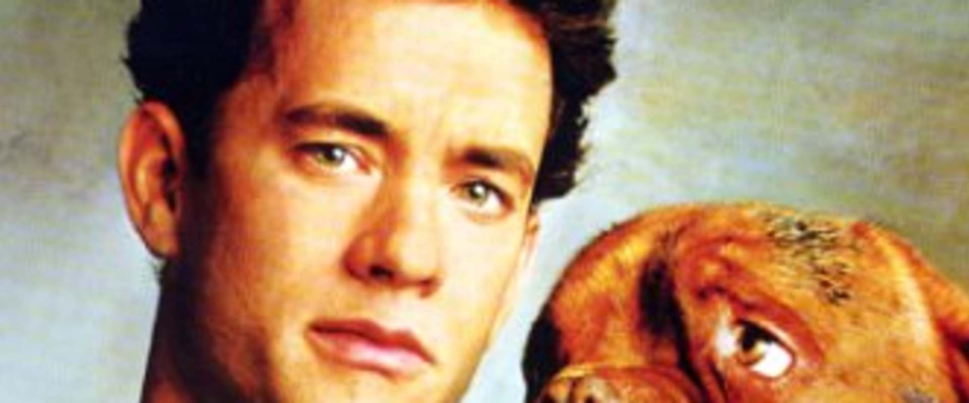 Turner & Hooch background 2