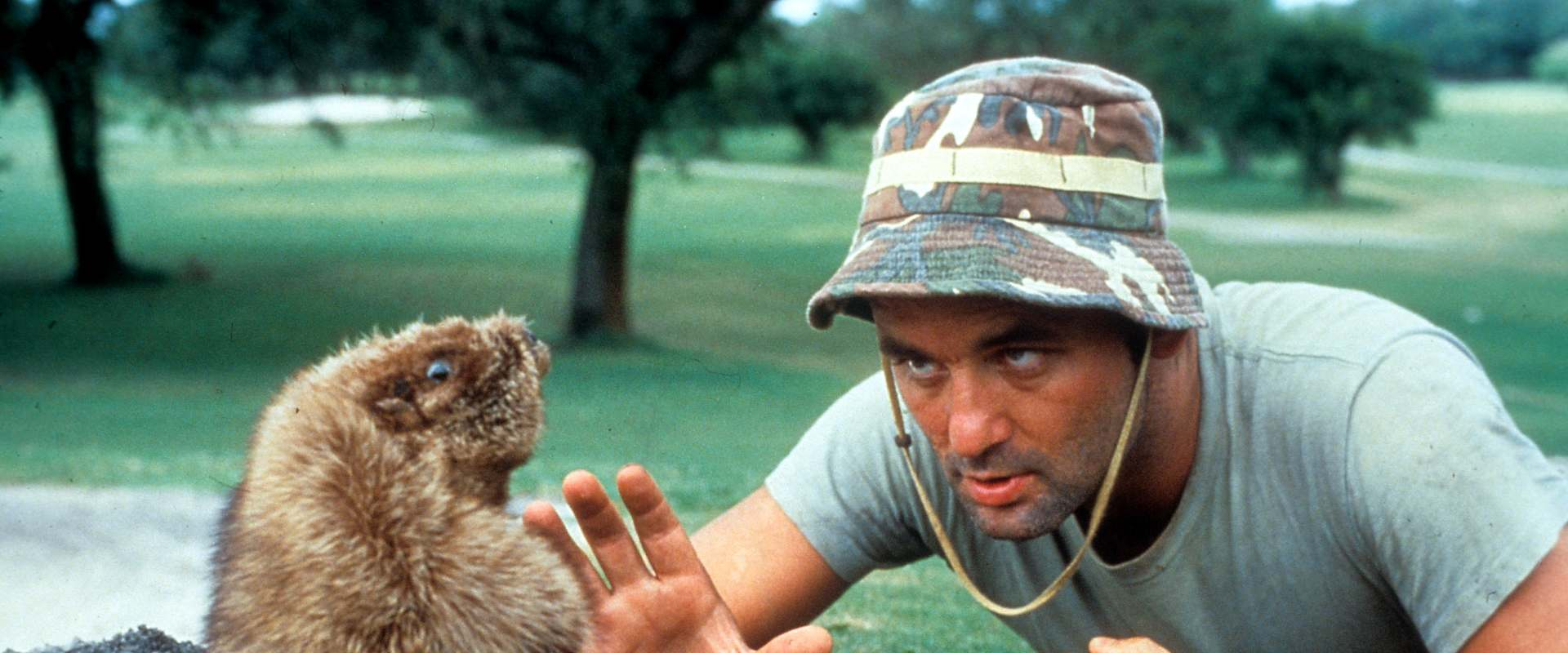 Caddyshack background 1