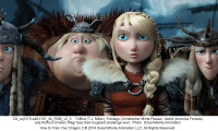 How to Train Your Dragon 2 Movie Still 5