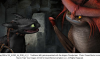 How to Train Your Dragon 2 Movie Still 4