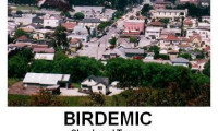 Birdemic: Shock and Terror Movie Still 3