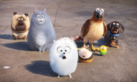 The Secret Life of Pets Movie Still 8