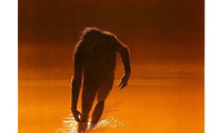 The Legend of Boggy Creek Movie Still 1