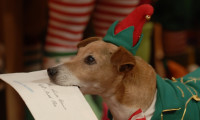 The Search for Santa Paws Movie Still 3