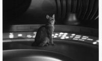 The Cat from Outer Space Movie Still 1