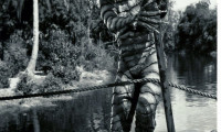 Creature from the Black Lagoon Movie Still 6
