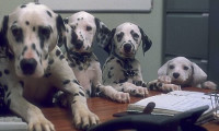 102 Dalmatians Movie Still 4
