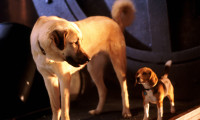 Cats & Dogs Movie Still 6