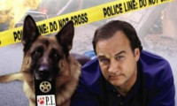 K-9: P.I. Movie Still 7