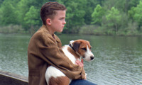 My Dog Skip Movie Still 1