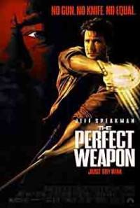 The Perfect Weapon Poster 1