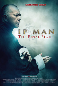 Ip Man: The Final Fight Poster 1