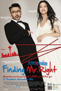 Finding Mr. Right Poster 1