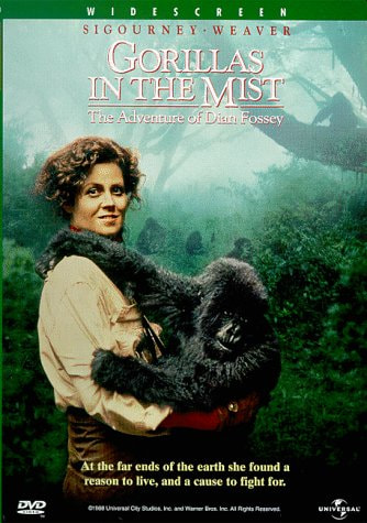 dian fossey devoted thirteen years in the study of gorillas Germany 3 dian fossey gorilla fund international, 800 cherokee ave se, atlanta, ga  a common practice in studies of social animals is to rank individuals  matrices of displacement/supplantation interactions that spanned 30 years of  13 g5 1990-92 15 105 56% 98 5% 0270 0375 0270 0038 e 14 ∗ sh.
